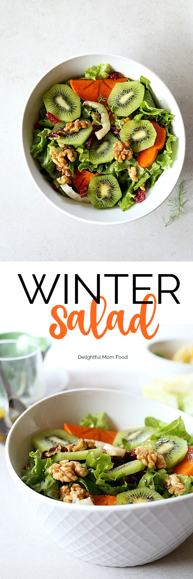 Winter Salad with Kiwi, Persimmons, Walnuts and Cranberry in a walnut vinaigrette dressing. Top the green salad with dried cranberries or pomegranate seeds for an extra burst of color and tang!
