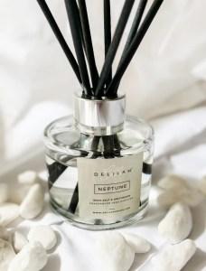 Neptune Reed Diffuser, Luxury Room Fragrances by Delilah Chloe