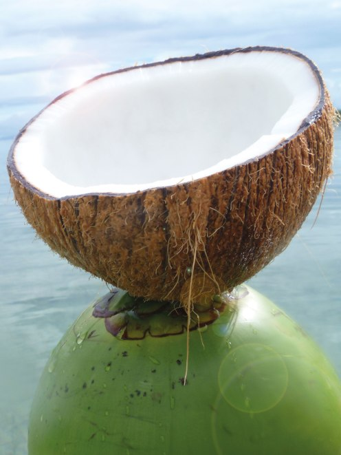 Kokosnuss-auf-Gruener_rgb