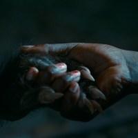 As Boas Maneiras: uma fábula de terror brasileira