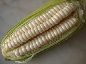 Colombian Arepas de Choclo (Griddled Sweet Corn Cakes) | Delish D'Lites