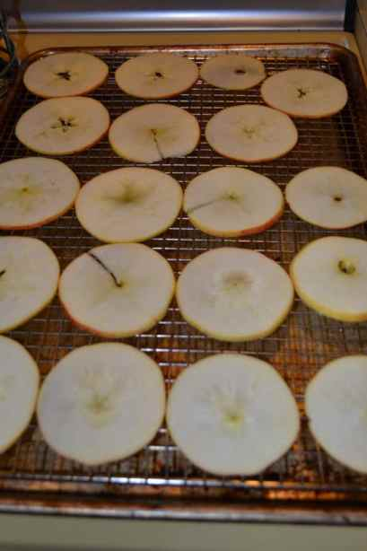 Baked Apple Chips | Delish D'Lites