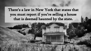New York Law - Haunted House