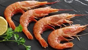 Langostinos-enteros-nro-1-01-Dick-Fish-Compra-y-Venta-Argentina