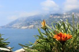 Amalfi Coast Photo Gallery 2