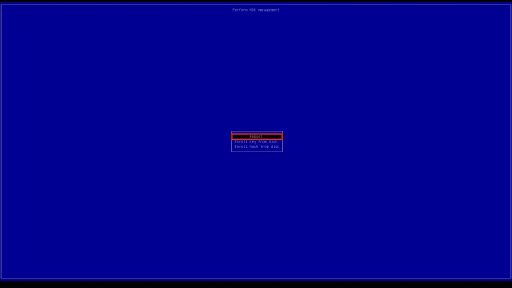Dell UEFI BIOS Zorin OS Boot Enroll MOK Reboot.