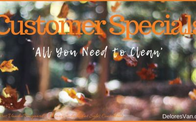 All You Need to Clean Your House… Norwex Microfiber