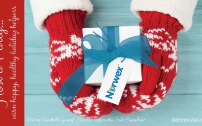 December is Perfect for Hosting a Norwex Party