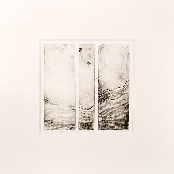 pointe sèche sur rhénalon, 11 x 11 cm, 2019