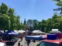 Delta's market serves community