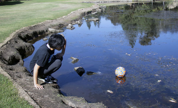 Opinion Editor Vivienne Aguilar retrieves her ball after kicking it into the pond.