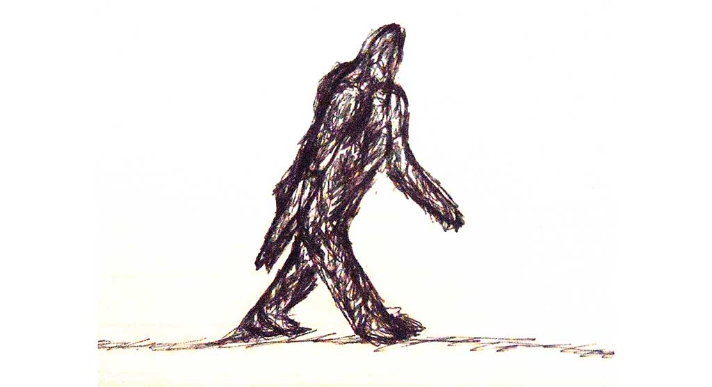 DD-bigfoot