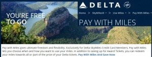 pay with miles delta