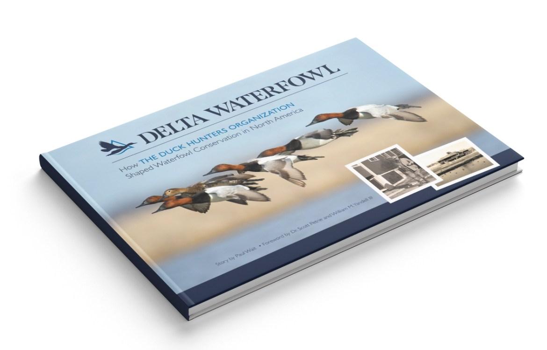 Delta book mockup