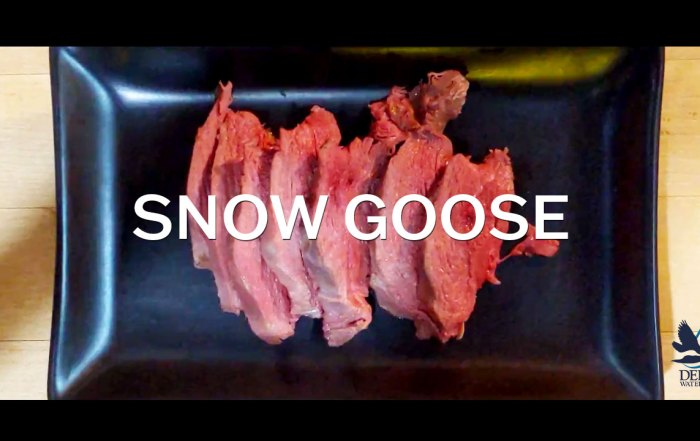 Snow goose sous vide