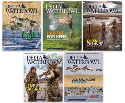 20-21 Magazine Covers