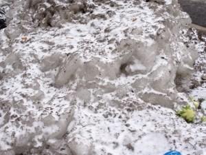Winter's icy teeth:  glaciers forming on the sidewalk.