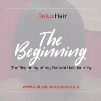 DeluxHair - The Beginning