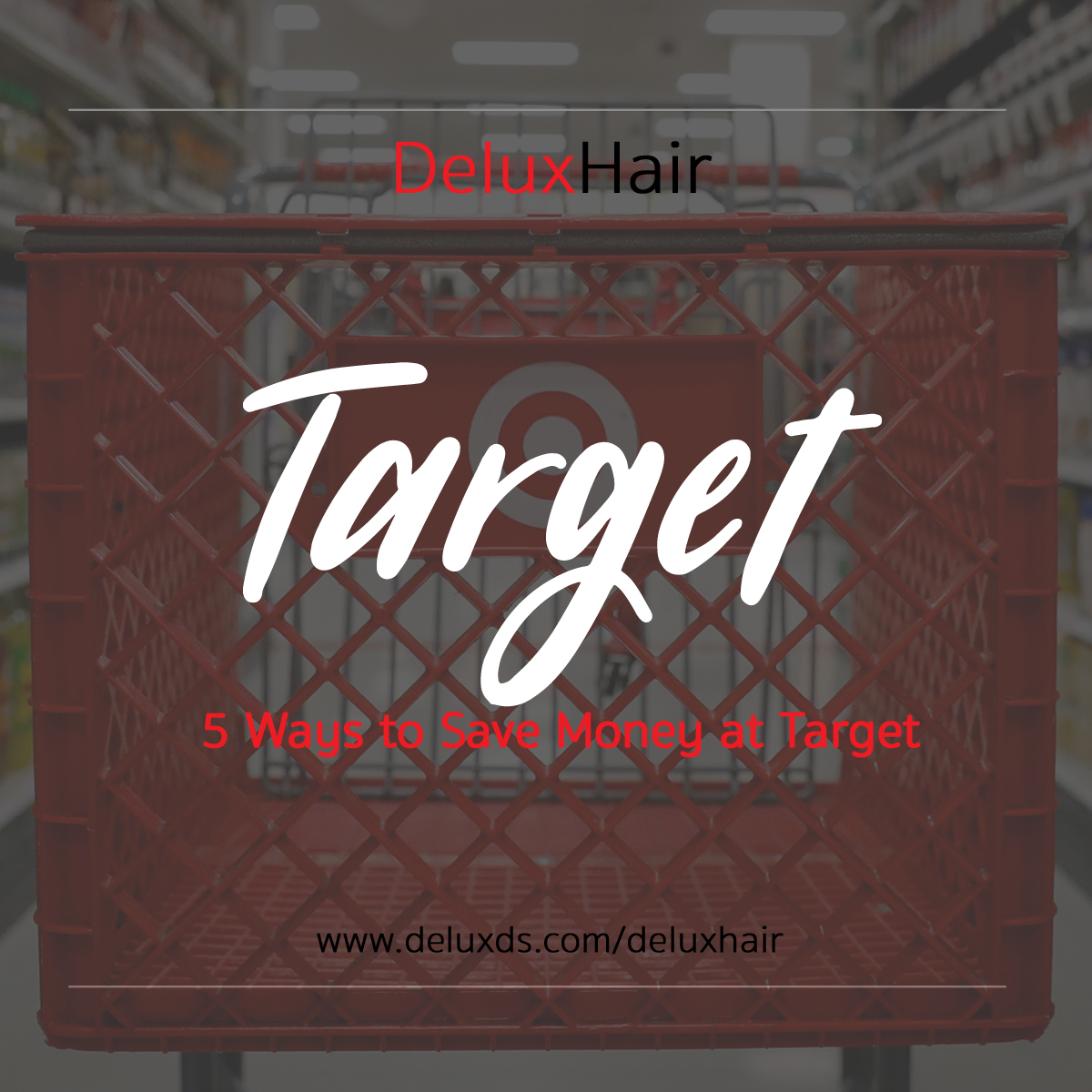 DeluxHair - 5 Ways to Save Money at Target with FabfitFun