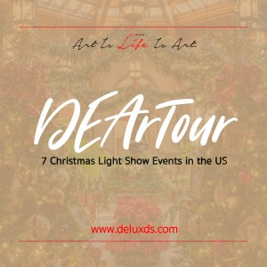 7 Christma Light Shows