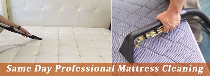 Image result for mattress cleaning
