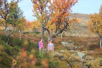 Hösttur med systrarna Waara.
