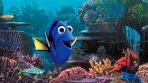 "Disney/ Pixar ""Finding Dory"""