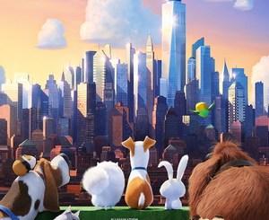 The Secret Life Of Pets box office