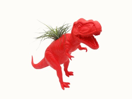 Dino Planter-Rexy from Collected $85.00
