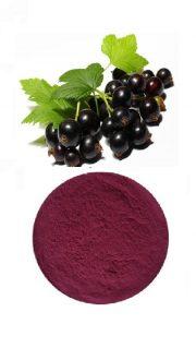 Organic-elderberry-Powder-1.jpg