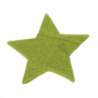 Vilt ster