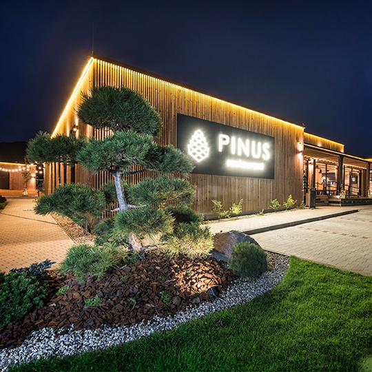 Reštaurácia PINUS