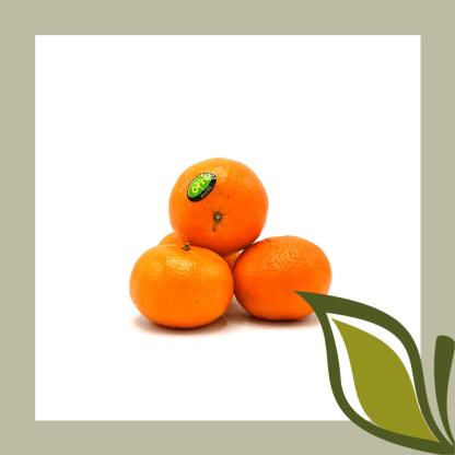 clementine orri