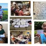 Indivisible Hawaii Postcards
