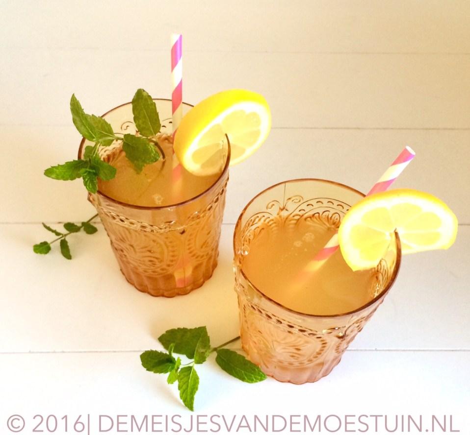 homemade citroen-munt limonade