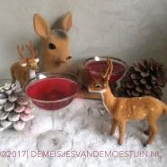 cranberry likeur met mandarijn en limoen