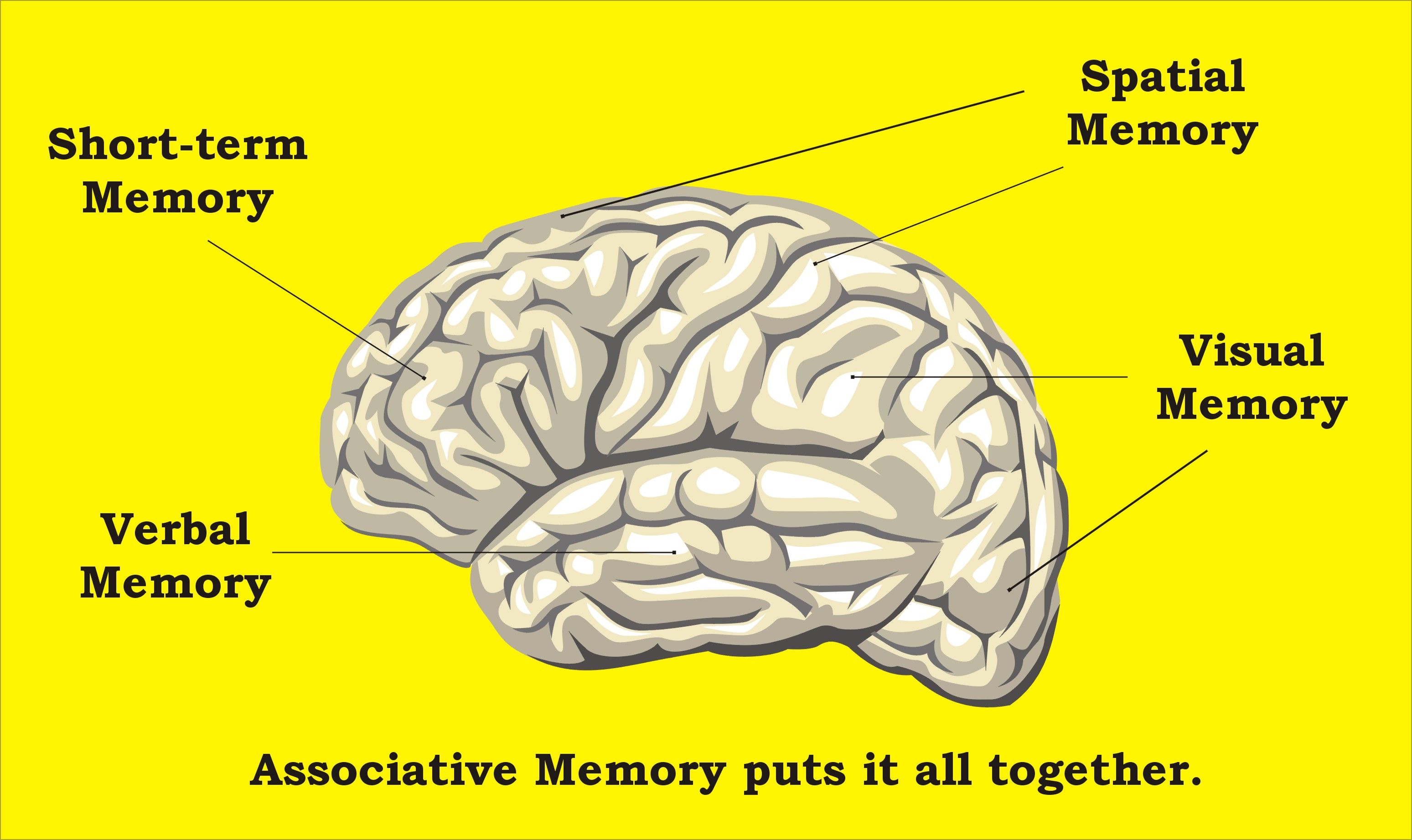 5 Prescription Drugs That Can Cause Memory Loss And What