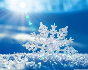 School Closure Due to Snow