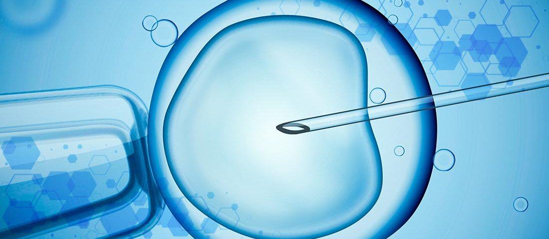 Consumibles médicos para procedimientos de reproducción asistida