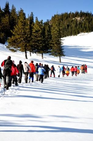 Grupul, mergând spre vârf