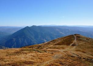 Creasta Pietrosului din Munții Bistriței, văzută de pe traseul turistic care urcă spre Vf Giumalău.