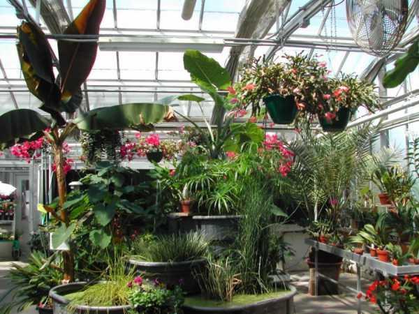 Оформление сада фото своими руками – 75 идей декора сада ...