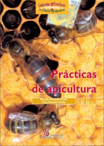 PRACTICAS DE APICULTURA