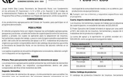 PROGRAMA PESO A PESO YUCATÁN | APOYOS APÍCOLAS | De Mieles y Abejas