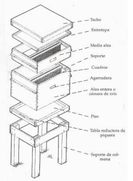 Colmena-moderna