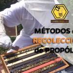 Portada -metodos de recoleccion del propoleo