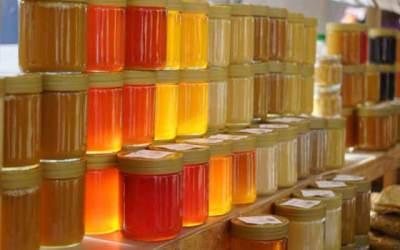 ¿Mafias de la miel? alternativas para apicultores