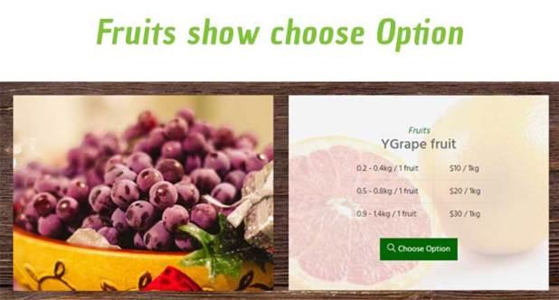Organic Orgafresh – Organic & Food WooCommerce WordPress Theme - 6
