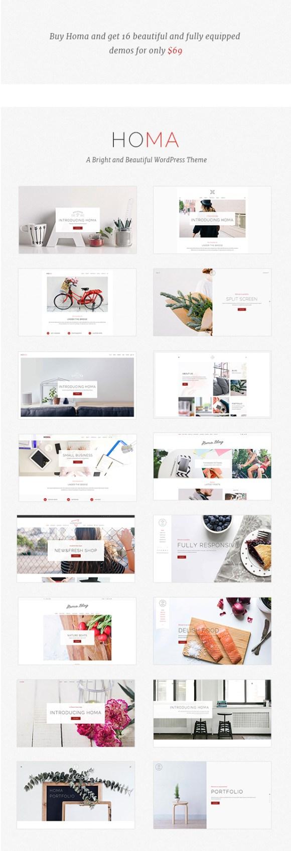 Homa - Elegant WordPress Theme - 1