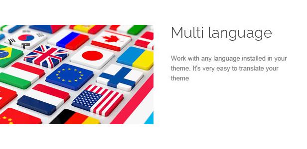 des_18_multi_language